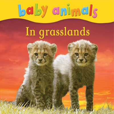 Book cover for Baby Animals: In Grasslands